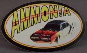 Ammonia - Mint 400 Promo Sticker