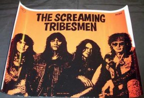 Screaming Tribesmen - Bones + Flowers Promo Poster